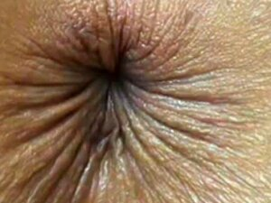 Nothing But Butthole Porn